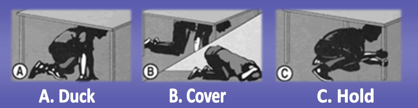 Earthquake - Duck Cover Hold Illustration